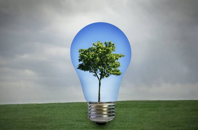 A geração de bioenergia: Um desafio